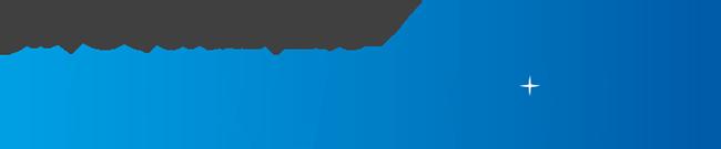 Servisone-logo